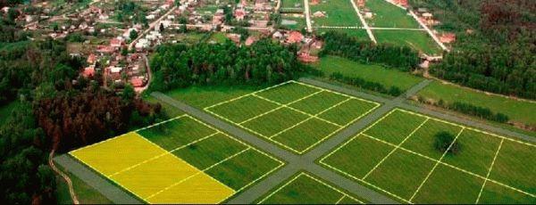 Как оформить в собственность бесхозный земельный участок